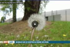 De plus en plus de Belges touchés par le rhume des foins: comment l'expliquer?